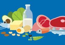 Why are Proteins Essential for Our Body